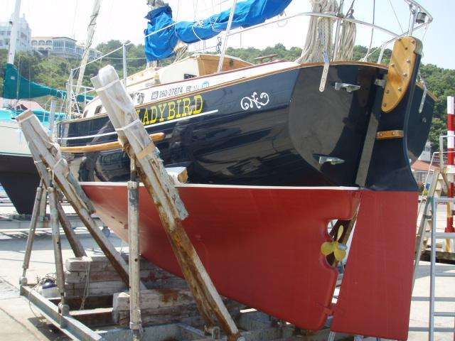 With the fresh bottom paint and buffed hull and deck, Lady Bird looks as new as she was 19 years ago. The two transom steps, a wooden bar through-bolted to the rudder, along with the rudders middle pintle_n_gudgeon and the prop aperture are all one needs to climb aboard from the sea.